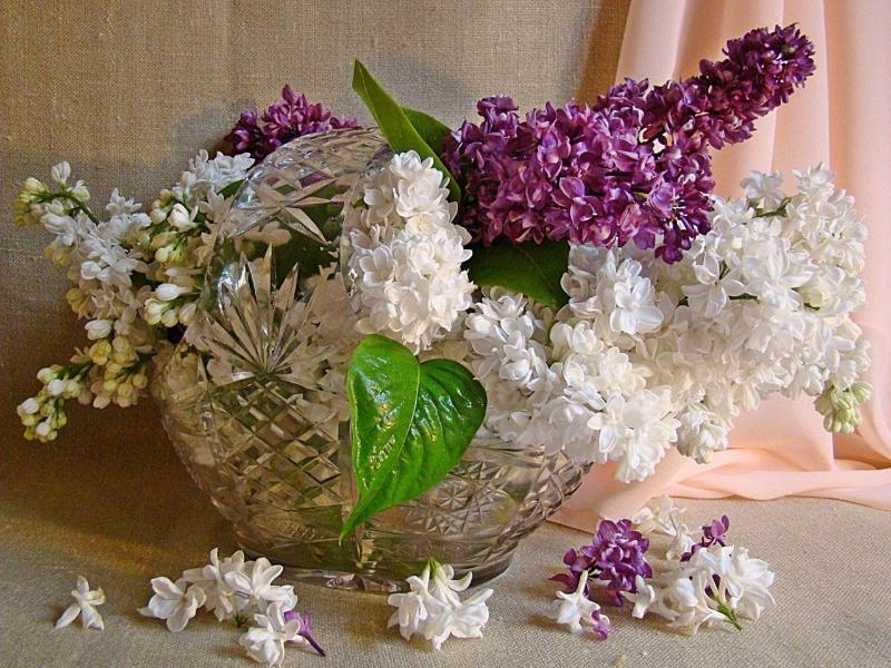 Цветы и хрусталь