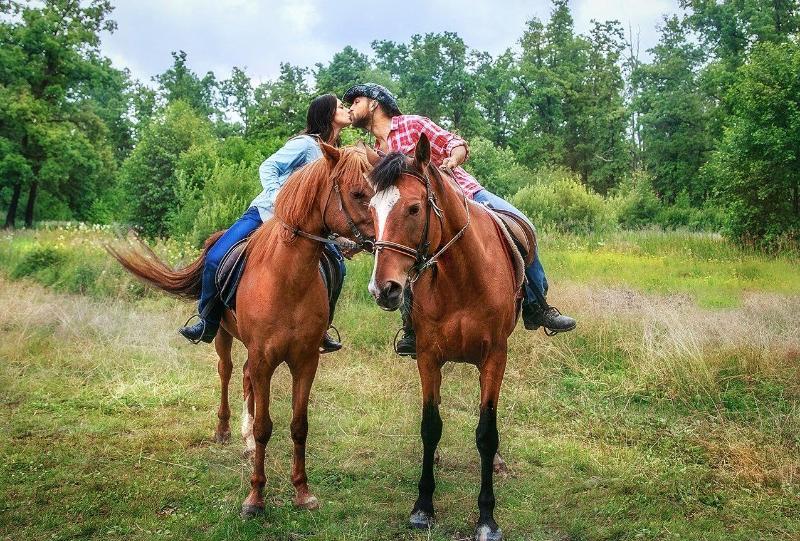 На лошадях